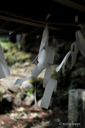 十二所神社_03渡る風-5816