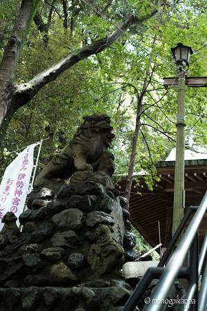 十二所神社_04狛犬-5817