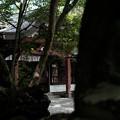 胎内神社13出口から拝殿を望む-6014