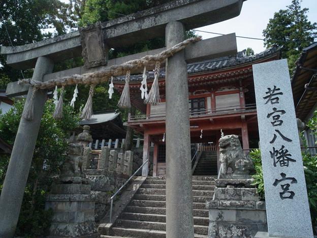 写真: 若宮八幡宮01_GXR_鳥居と山門-0048257