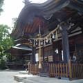 写真: 若宮八幡宮06 _GXR_拝殿-0048264