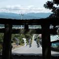 写真: 武田八幡宮02一の鳥居-6226