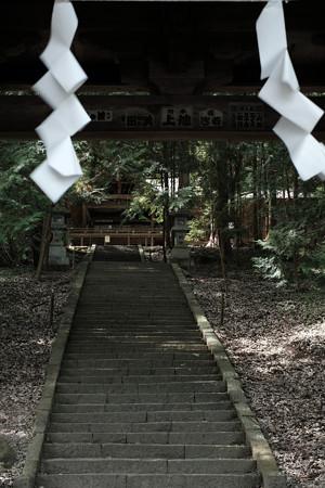 武田八幡宮03_拝殿-6217