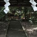 写真: 武田八幡宮03_拝殿-6217