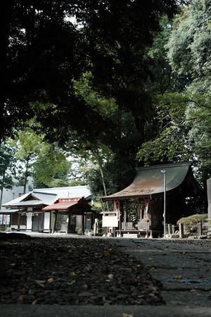 飯能恵比寿神社-6086