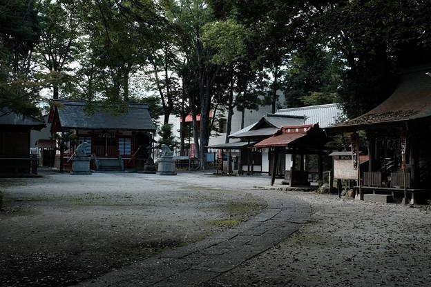 写真: 飯能恵比寿神社-6087
