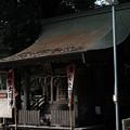 写真: 飯能恵比寿神社-6088