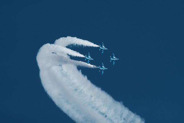 Photos: ブルー-6626