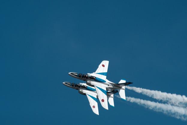 Photos: ブルー-6629