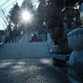 写真: 御嶽神社_06かっぱさま-7048