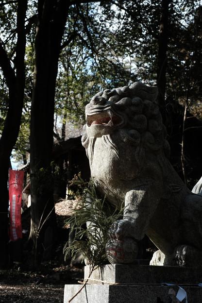 新府城07_狛犬-7088