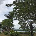 Photos: Vanuatu