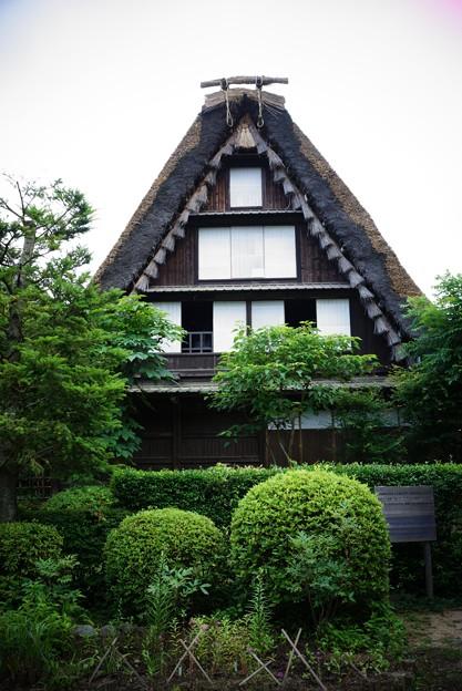 新緑から見る白川郷の家・・20120630