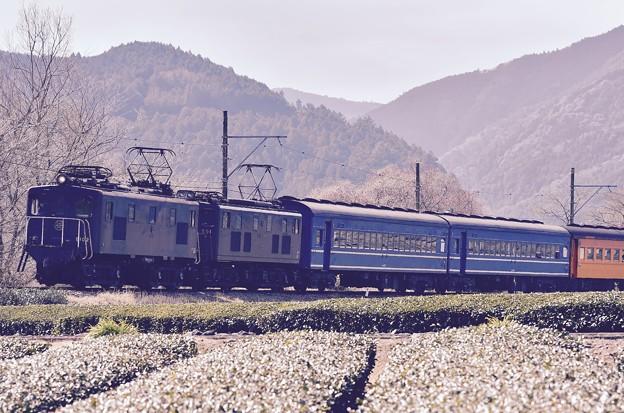 大井川鐵道SLフェスタ。。臨時列車EL電車機関車で客車引っ張る
