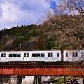 Photos: 大井川鐵道にアルミボディの列車 元東急7200系 崎平鉄橋
