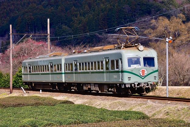 大井川鐵道SLフェスタ限定ヘッドマーク付き元南海ズームカー