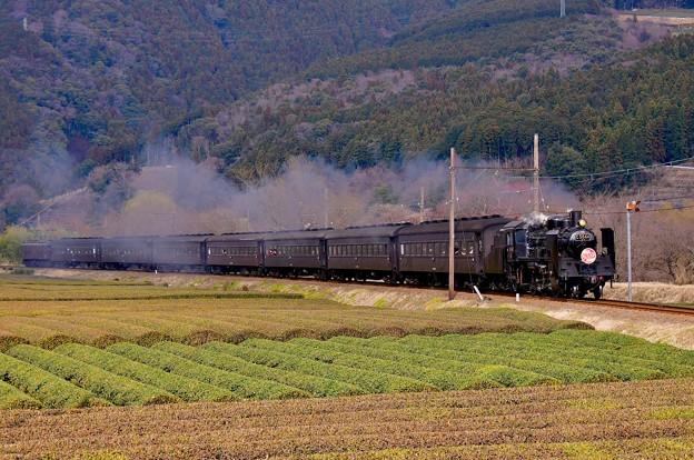 大井川鐵道のローカル風景に合うSLの走り