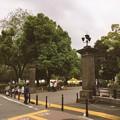 撮って出し。。朝の散歩。。東京日比谷公園 4月22日
