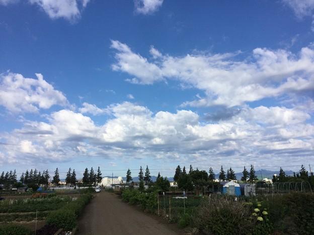 ある日の横田基地。。A-10上がるか期待で(^^) 20170605