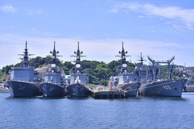 軍港めぐりに乗って。。吉倉桟橋はいっぱいの艦船 20170610