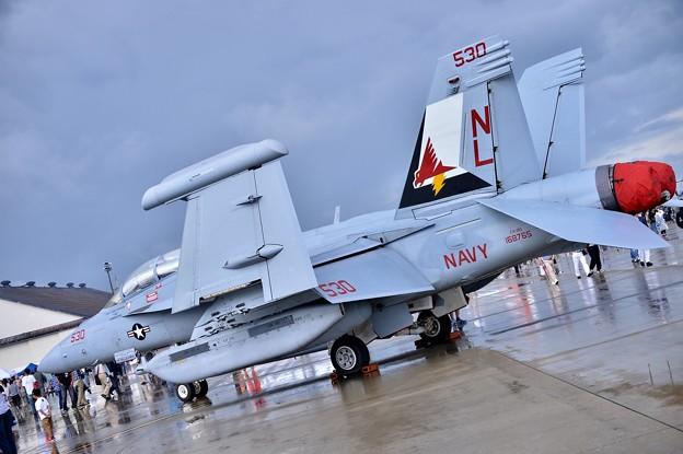 三沢基地航空祭。。VAQ-134ガルーダスのEA-18Aグラウラー