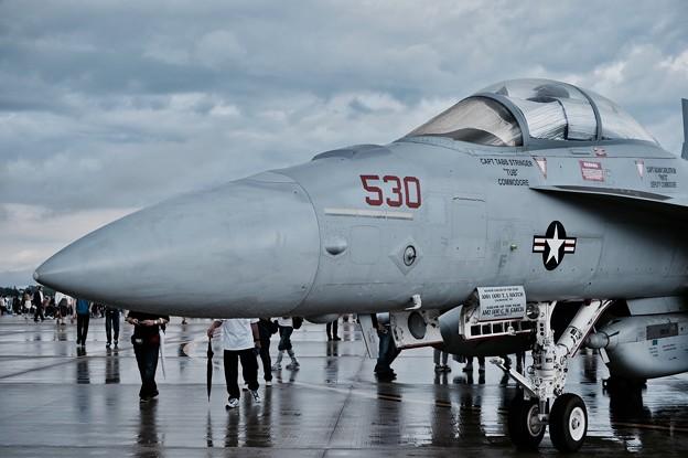 三沢基地航空祭。。VAQ-134ガルーダス NL530  雨上がり 20170910