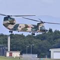 写真: 航空祭終えて翌日。。朝から訓練開始CH-47チヌーク