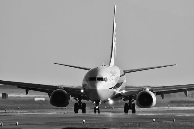 モノクロの風景。。岩国錦帯橋空港 ANA B737-800 20171009