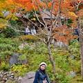 外国人観光客に人気の撮影スポット(^^) 昭和記念公園 20171104