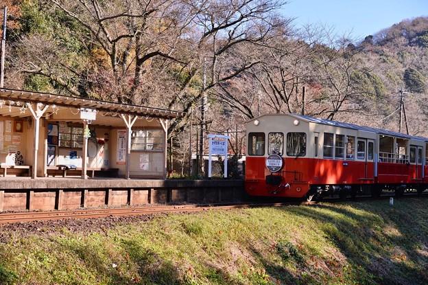撮って出し。。小湊鉄道のトロッコ列車 上総大久保駅 12月10日