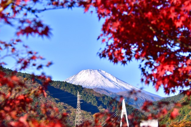 写真: 雪が積もった富士山と紅葉。。丹沢湖 20171112