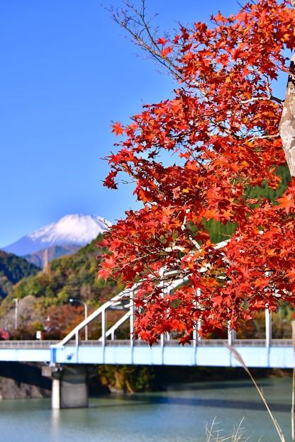 丹沢湖の鉄橋と紅葉。。富士山(^^) 20171112