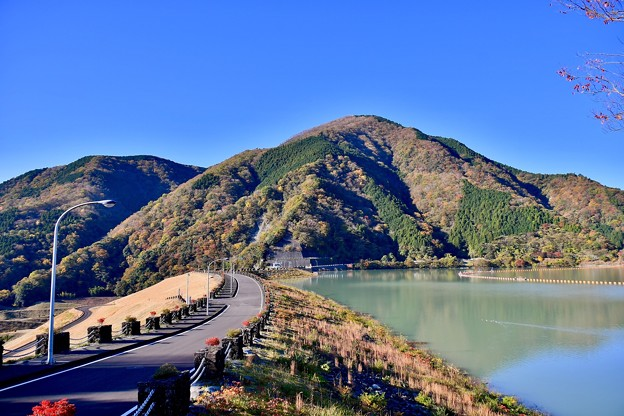 神奈川県の水瓶の一つ。。貯水率90以上の三保ダムの紅葉 20171112