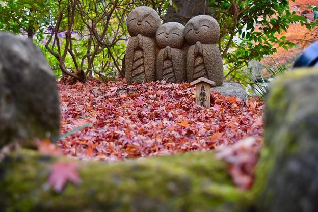 紅葉の落ち葉に微笑む地蔵。。長谷寺 20171209
