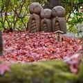 写真: 紅葉の落ち葉に微笑む地蔵。。長谷寺 20171209