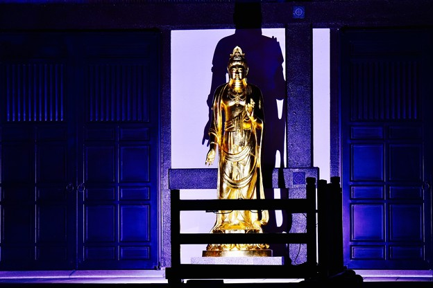 青紫のライトアップ。。金色の仏像 鎌倉長谷寺 20171209