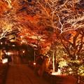 綺麗な長谷寺の紅葉ライトアップ 20171209