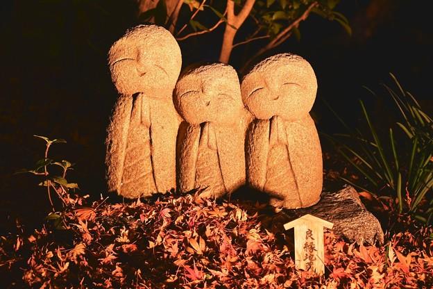 落ち葉の紅葉とライトアップされて良縁地蔵 長谷寺 20171209