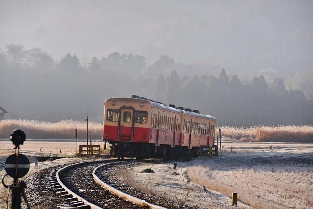 朝靄と霜が降りた風景 小湊鉄道キハ200  20171210