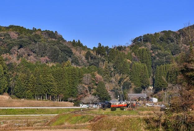 いい天気千葉県小湊鉄道。。トロッコ列車走る 20171210