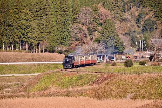 田園風景を走る小湊鉄道トロッコ列車。。月崎ー上総大久保間 29171210