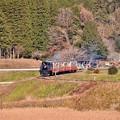 写真: 田園風景を走る小湊鉄道トロッコ列車。。月崎ー上総大久保間 29171210