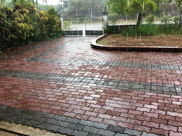 雨のミャンマー イーストダゴン (3)