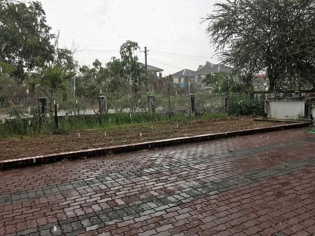 雨のミャンマー イーストダゴン (4)