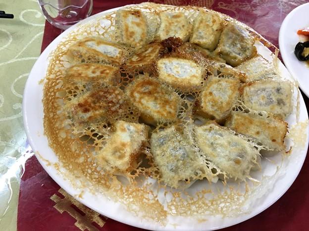 遼寧餃子館 餃子と木耳炒め (9)