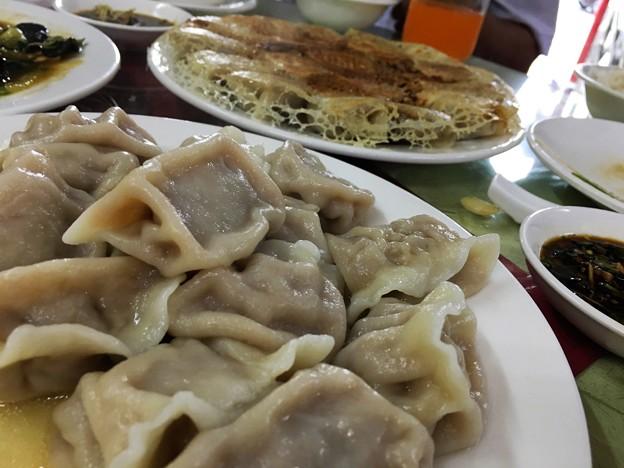 遼寧餃子館 餃子と木耳炒め (12)