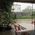 写真: 大雨の中で遊ぶ人たち (1)