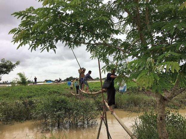 Twantayの田圃 (4)