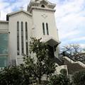 横浜海岸協会