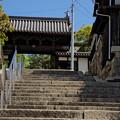 写真: お寺へ続く道